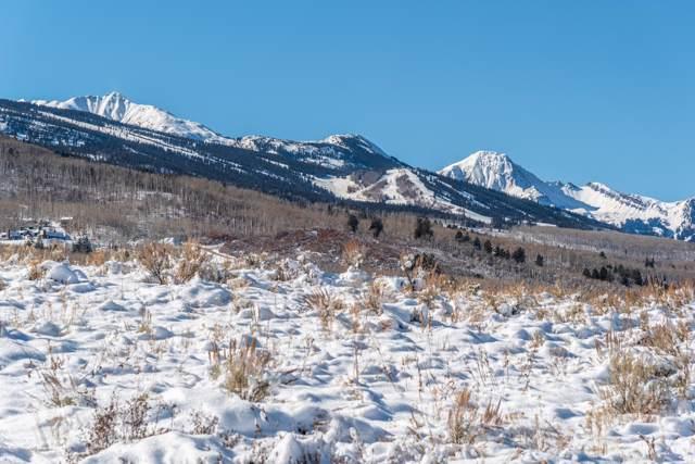 1333 W Buttermilk Road, Aspen, CO 81611 (MLS #162269) :: McKinley Real Estate Sales, Inc.