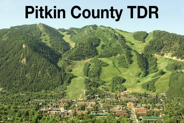 TDR Tdr, Aspen, CO 81611 (MLS #163210) :: Roaring Fork Valley Homes