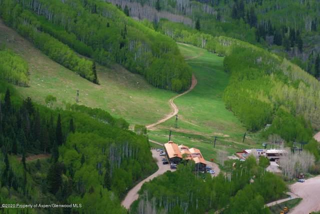 11101 County Road 117 6B, Glenwood Springs, CO 81601 (MLS #163360) :: Roaring Fork Valley Homes