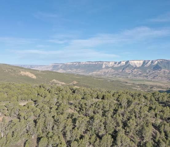 TBD Cedar Breaks Road, Rifle, CO 81650 (MLS #164190) :: Roaring Fork Valley Homes