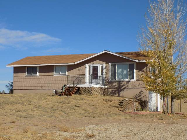 110 Western Avenue, Craig, CO 81625 (MLS #165905) :: Western Slope Real Estate