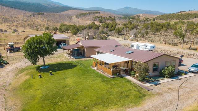 4120 County Road 320, Rifle, CO 81650 (MLS #166128) :: McKinley Real Estate Sales, Inc.