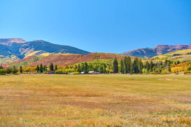 TBD Otter Brook Drive, Snowmass, CO 81654 (MLS #166204) :: Roaring Fork Valley Homes