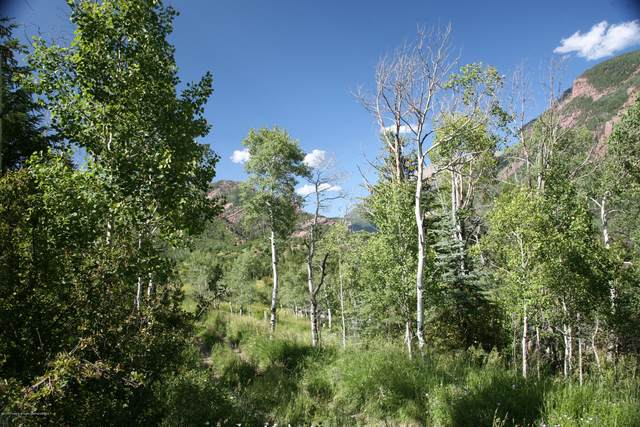 Tbd Elk Mountain Drive, Redstone, CO 81623 (MLS #166421) :: McKinley Real Estate Sales, Inc.