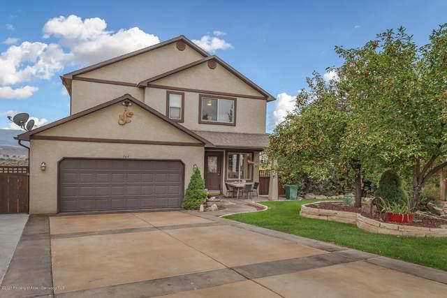 787 Antler Point Lane, Silt, CO 81652 (MLS #166503) :: McKinley Real Estate Sales, Inc.