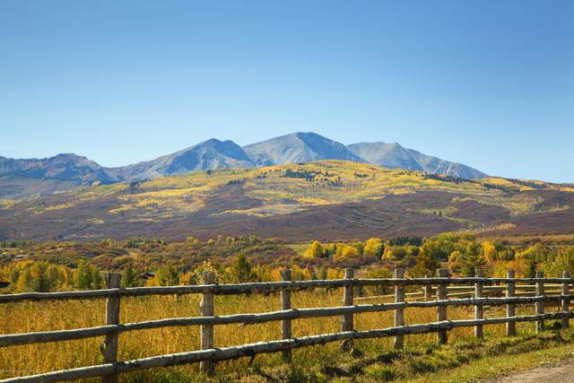 82 Haystack Lane, Snowmass, CO 81654 (MLS #166767) :: McKinley Real Estate Sales, Inc.