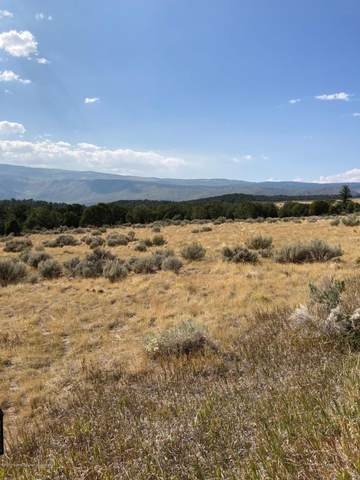 2247 Elk Springs Drive, Glenwood Springs, CO 81601 (MLS #166787) :: Roaring Fork Valley Homes
