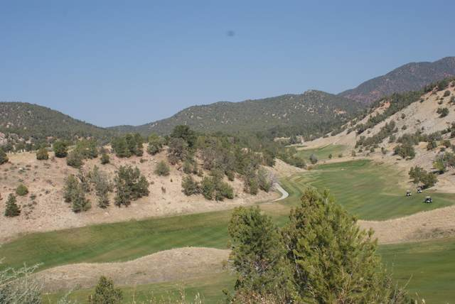 24 Stag Court, New Castle, CO 81647 (MLS #166967) :: Western Slope Real Estate