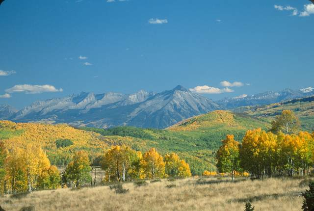 13420 County Road 265, Somerset, CO 81434 (MLS #167715) :: Roaring Fork Valley Homes
