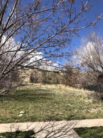 3963 Sky Ranch Drive, Glenwood Springs, CO 81601 (MLS #169683) :: Western Slope Real Estate