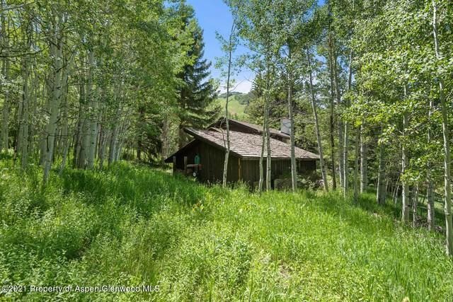 315 Glen Dee Drive, Aspen, CO 81611 (MLS #169903) :: Aspen Snowmass | Sotheby's International Realty