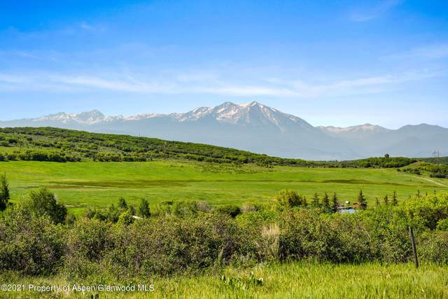 57 White Tail Drive, Glenwood Springs, CO 81601 (MLS #170365) :: Western Slope Real Estate