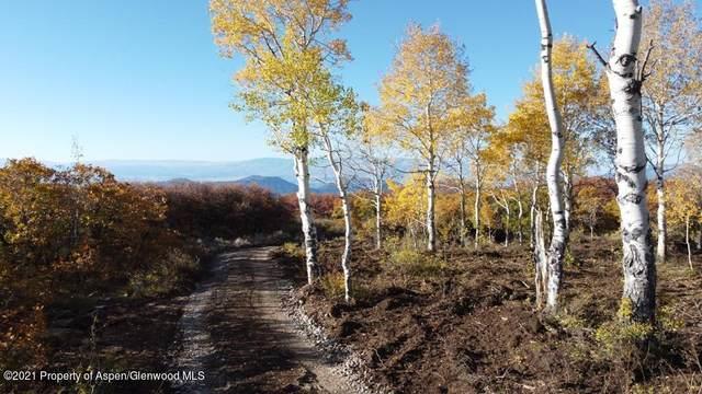 TBD Elk Ridge Road, New Castle, CO 81647 (MLS #172419) :: The Weber Boxer Group | Douglas Elliman