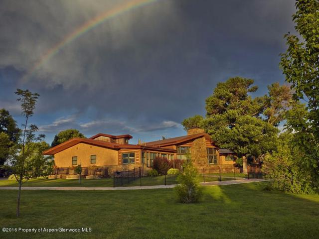 295 County Road 262, Silt, CO 81652 (MLS #146985) :: McKinley Sales Real Estate
