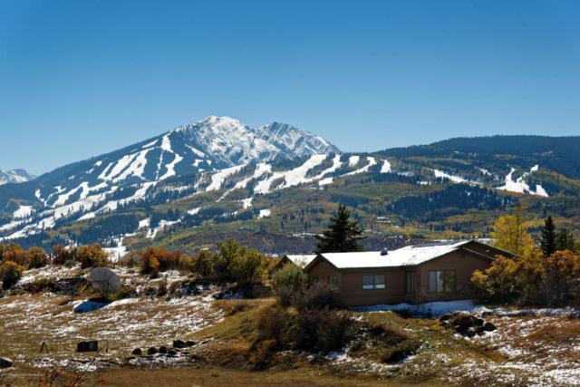 1765 Mclain Flats Road, Aspen, CO 81611 (MLS #151151) :: McKinley Sales Real Estate
