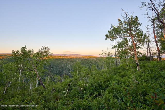 Lot 11 Tbd County Road 245, New Castle, CO 81647 (MLS #153478) :: McKinley Real Estate Sales, Inc.