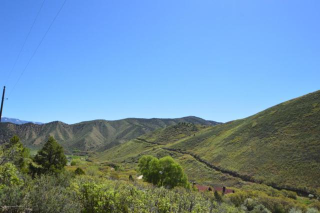 TBD W Sopris Creek Road, Basalt, CO 81621 (MLS #153971) :: McKinley Sales Real Estate