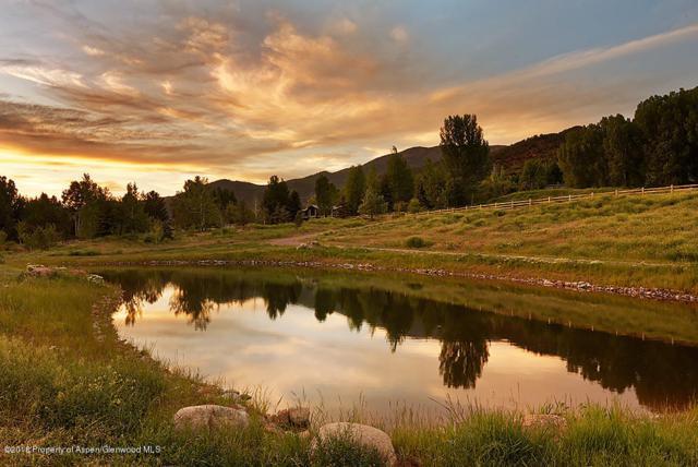 184 & 186 Hoaglund Ranch Rd, Basalt, CO 81621 (MLS #154146) :: McKinley Real Estate Sales, Inc.