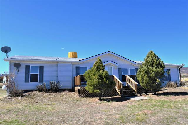 4300 Grass Mesa Road, Rifle, CO 81650 (MLS #162529) :: McKinley Real Estate Sales, Inc.