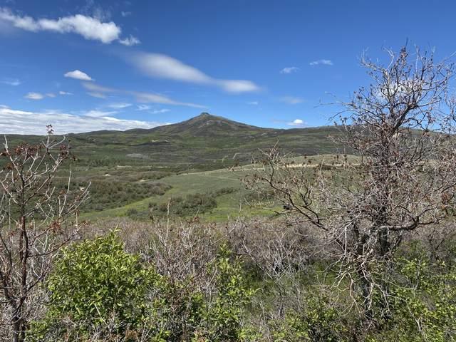 101 Pebble Lane, Craig, CO 81625 (MLS #164334) :: Roaring Fork Valley Homes