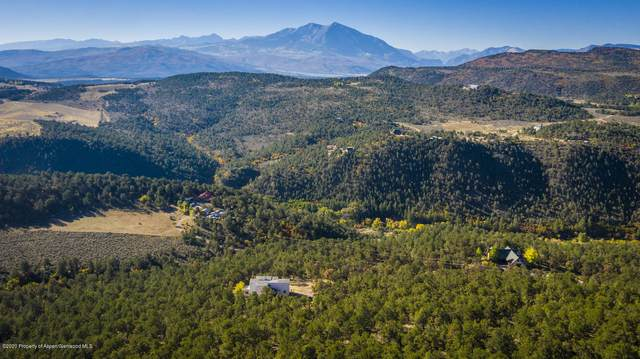 4339 Cr 113, Carbondale, CO 81623 (MLS #164373) :: Roaring Fork Valley Homes