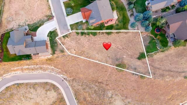 382 Sparrow Hawk Drive, New Castle, CO 81647 (MLS #165867) :: McKinley Real Estate Sales, Inc.