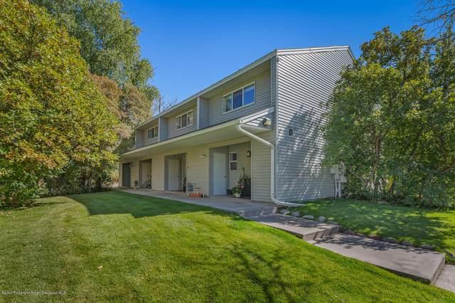 405 Park Avenue D-1, Basalt, CO 81621 (MLS #166786) :: McKinley Real Estate Sales, Inc.