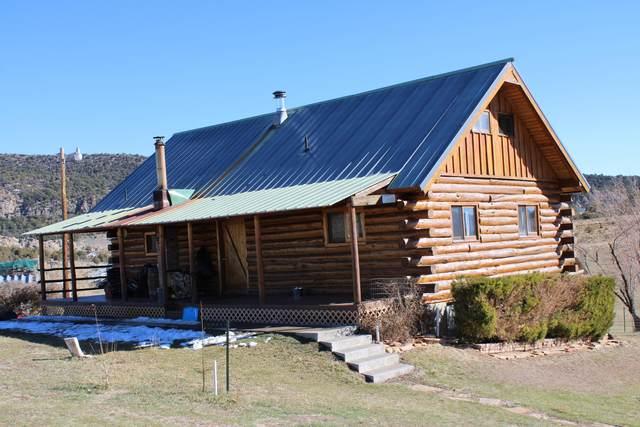 67 Sandstone Drive, Meeker, CO 81641 (MLS #167558) :: Roaring Fork Valley Homes