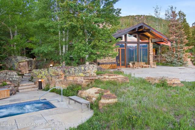 1020 Carroll Drive 300, 310, 314, Aspen, CO 81611 (MLS #167948) :: Roaring Fork Valley Homes