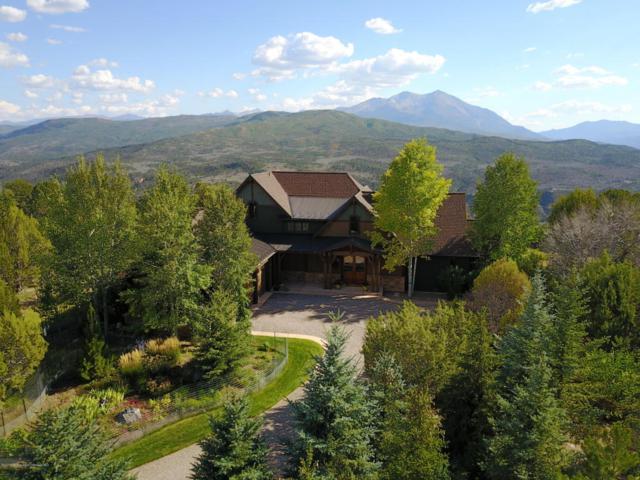 407 Skipper Drive, Carbondale, CO 81623 (MLS #144061) :: McKinley Sales Real Estate