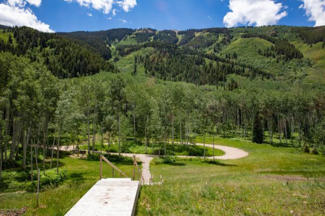 640 S Hayden Road, Aspen, CO 81611 (MLS #147442) :: McKinley Real Estate Sales, Inc.