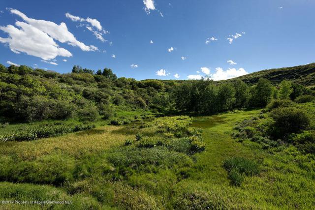 Tbd Juniper Hill Drive, Aspen, CO 81611 (MLS #149305) :: McKinley Sales Real Estate