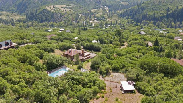 0225 Cherokee Lane, Carbondale, CO 81623 (MLS #152994) :: McKinley Sales Real Estate