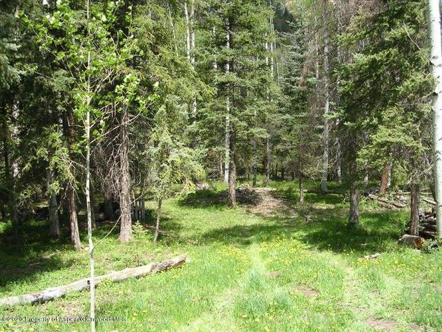 TBD Bobcat Lane, Redstone, CO 81623 (MLS #158752) :: McKinley Real Estate Sales, Inc.