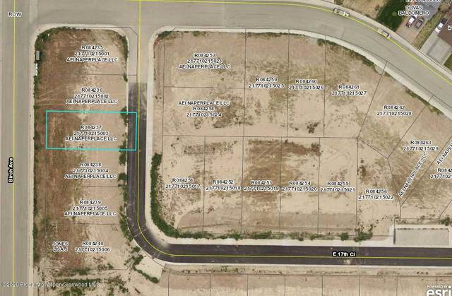 TBD E 17th Circle, Rifle, CO 81650 (MLS #158483) :: McKinley Real Estate Sales, Inc.