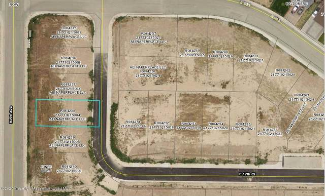 TBD E 17th Circle, Rifle, CO 81650 (MLS #158484) :: McKinley Real Estate Sales, Inc.