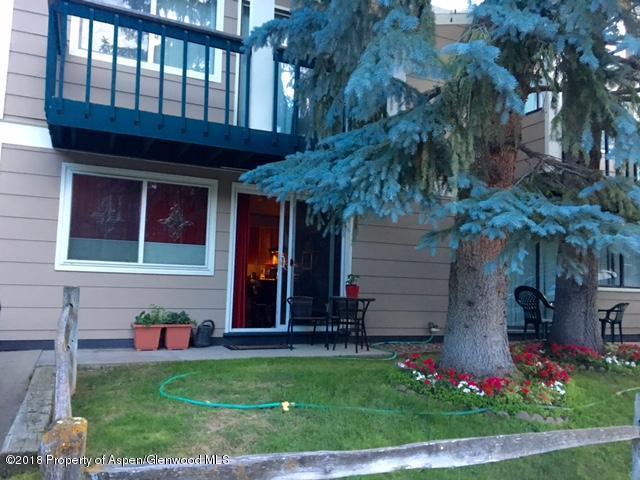 915 E Hopkins Avenue #5, Aspen, CO 81611 (MLS #153444) :: McKinley Sales Real Estate