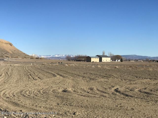 1153 Wildcat Lane, Delta, CO 81416 (MLS #155724) :: McKinley Sales Real Estate
