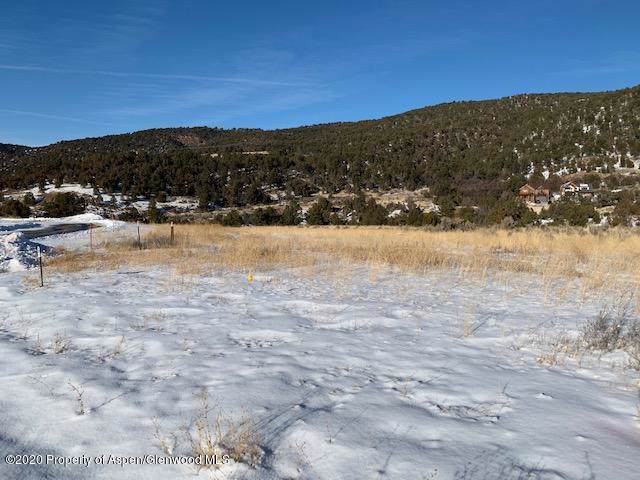 343 Pinyon Mesa Drive, Glenwood Springs, CO 81601 (MLS #162725) :: Western Slope Real Estate