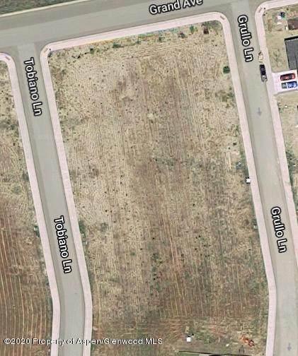 309 Grullo Lane, Silt, CO 81652 (MLS #165832) :: Aspen Snowmass | Sotheby's International Realty
