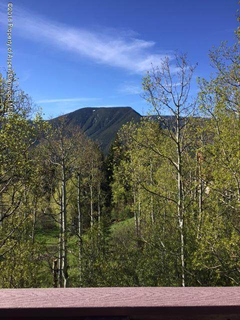 186 Hawk Lane, Basalt, CO 81621 (MLS #169280) :: Roaring Fork Valley Homes