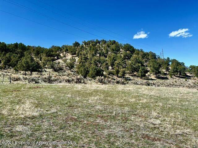 769 Perry Ridge, Carbondale, CO 81623 (MLS #169358) :: Western Slope Real Estate