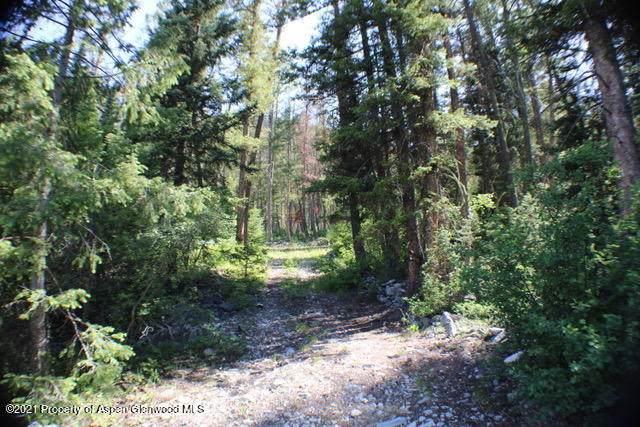 TBD Jasey Trail - Photo 1