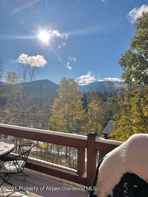 390 Hawk Lane, Basalt, CO 81621 (MLS #172418) :: Aspen Snowmass | Sotheby's International Realty