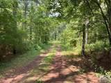 Lot 2 Wolfskin Road - Photo 3