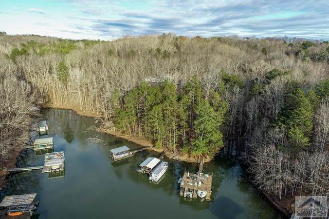 190 Robertson Court, Dawsonville, GA 30534 (MLS #978886) :: Signature Real Estate of Athens