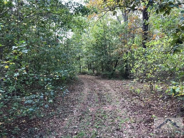 4802 Colham Ferry Rd, Watkinsville, GA 30677 (MLS #958880) :: The Holly Purcell Group