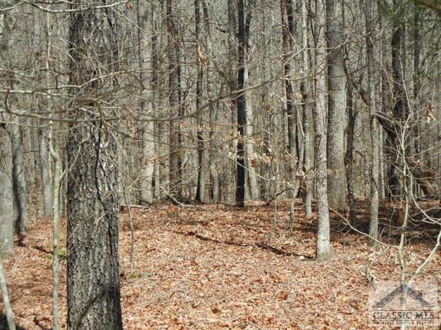 000 Morris Creek Road, Colbert, GA 30628 (MLS #959666) :: The Holly Purcell Group