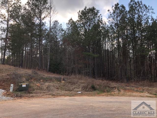 3091 Surry Ridge Drive, Watkinsville, GA 30677 (MLS #966070) :: Team Cozart