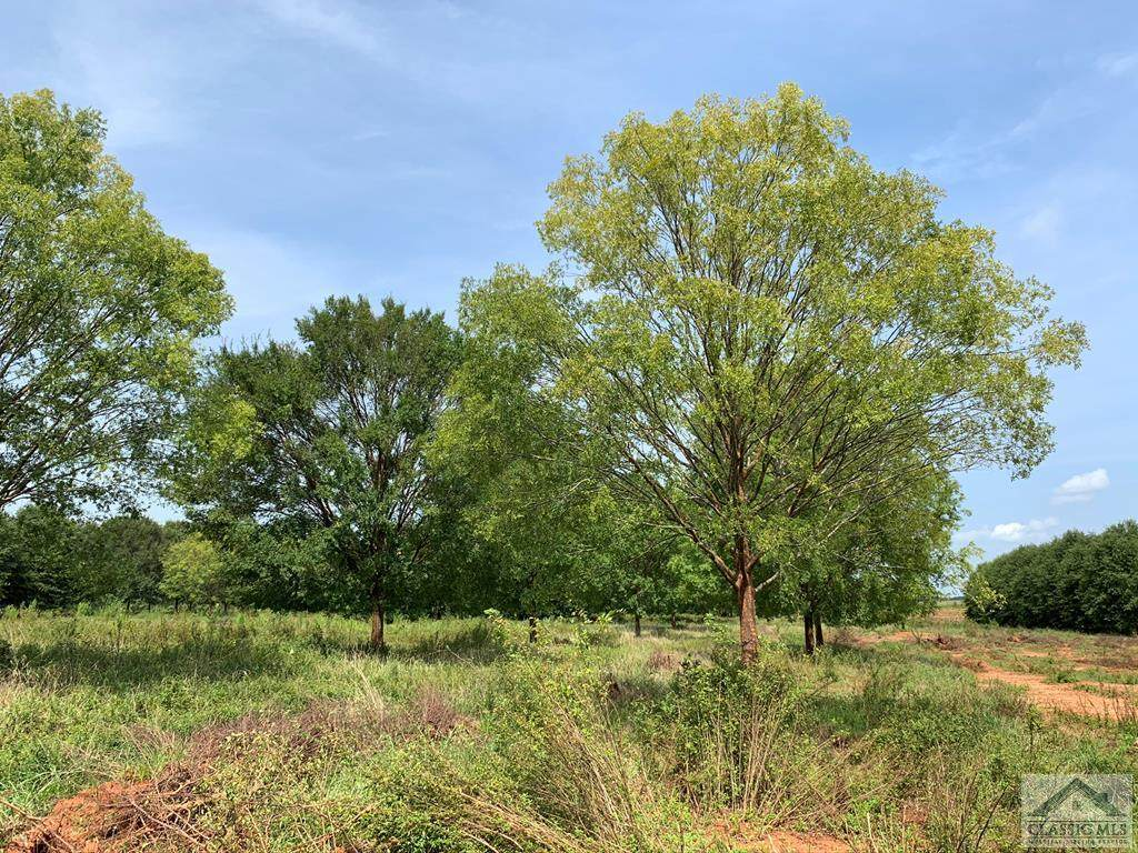 0 Lane Creek Road - Photo 1